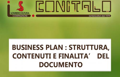 BUSINESS PLAN : STRUTTURA, CONTENUTI E FINALITA' DEL DOCUMENTO