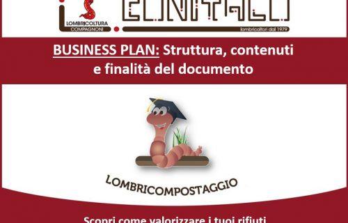 Business Plan: struttura, contenuti e finalità del documento