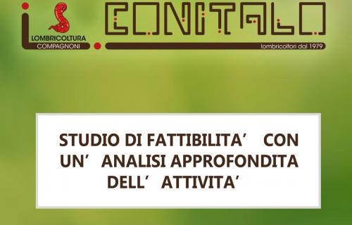 STUDIO DI FATTIBILITA' CON UN'ANALISI APPROFONDITA DELL'ATTIVITA'