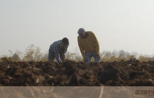 Video Corso sulla Lombricoltura